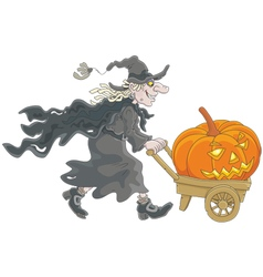 Witch with a Halloween pumpkin vector image vector image