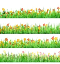 Green grass with flowers isolated EPS 10 vector image vector image