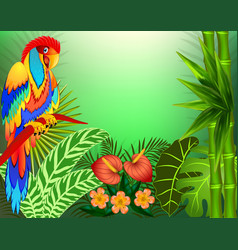 background with tropical leaves and parrots and vector image vector image