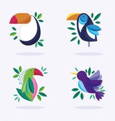 Birds ornithology nature fauna flora design vector