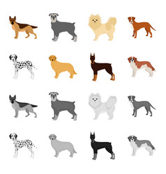 Dog breeds cartoonmonochrome icons in set vector