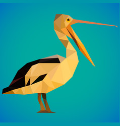 Image pelican bird painted in polygonal style on vector