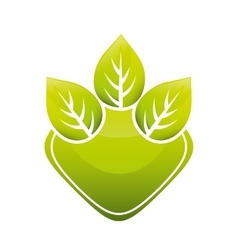 Leaves natural concept vector
