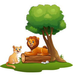 Liones cute of males and females sit in the forest vector