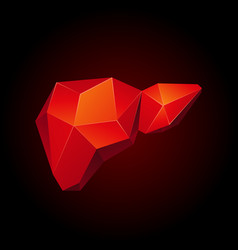 Red low poly human liver on a black background vector