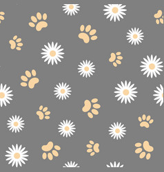 white daisies and animal paws seamless pattern vector image