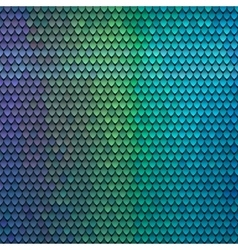 Abstract scale pattern Color squama texture vector image