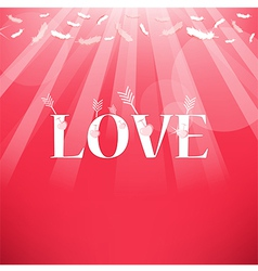 Arrow and Love Feathers from the sky vector