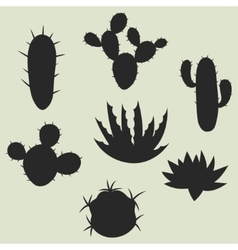 Collection of stylized cactuses and plants vector