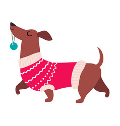 Cute dog in red winter sweater symbol xmas and vector