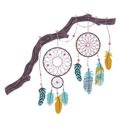 dream catcher with feathers isolated on white vector image