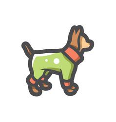 Pet clothes doggy icon cartoon vector