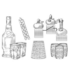 Set cachaca alcohol in doodle style on white vector