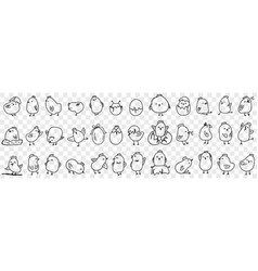 small chicks on farm doodle set vector image