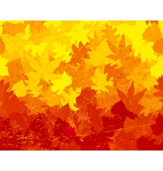Distressed autumn leaves wallpaper vector image