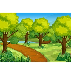 Park with green trees and hiking track vector