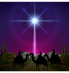 Three wise men in bethlehem vector