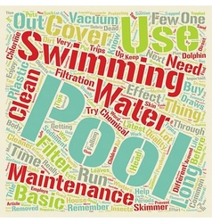 Basic Pool Maintenance Tips text background vector image