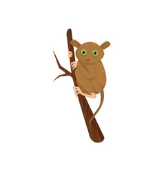 flat icon of tarsier sitting on tree branch vector image