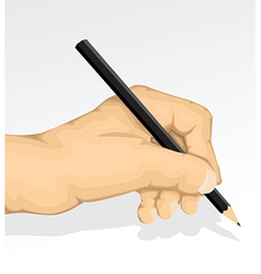 Hand Sketching vector image