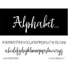 modern calligraphy vintage handwritten vector image