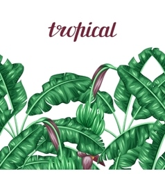 Seamless border with banana leaves Decorative vector