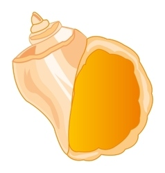 Seashell sea on white vector
