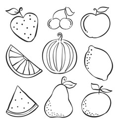 Set of fruit fresh doodles vector