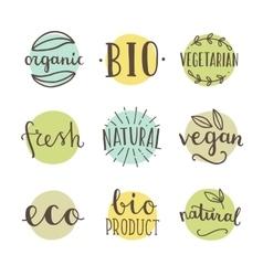Bio organic natural Set of hand drawn vector image vector image