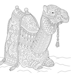 Camel adult coloring page vector