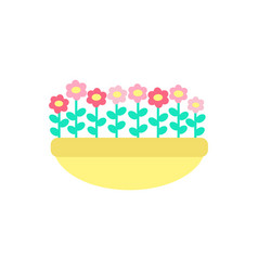 daisies grown in clay pot spring flowers vector image