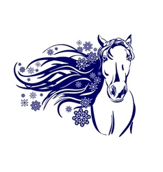 head of horse cartoon vector image
