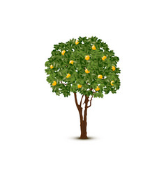 Mango Tree Vector Images Over 330 Our ai artist has made mango tree cartoon pictures. vectorstock