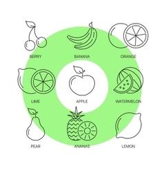 Organic fruit thin line icons set vector