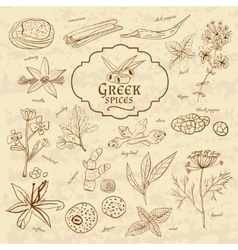 Set of spices cuisines Greece on old paper in vector image