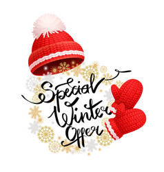 special winter offer promo banner red hat glove vector image
