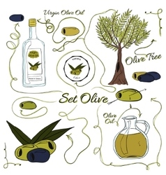 A large set of isolated colorful olive elements vector image