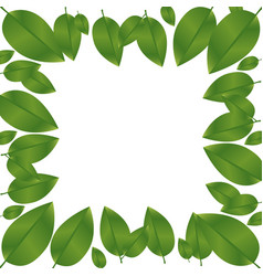 border green leaves with branch nature icon vector image vector image