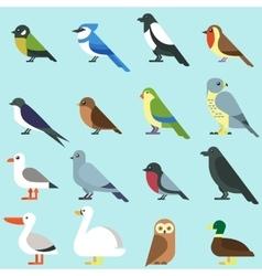 Different city birds icon vector image