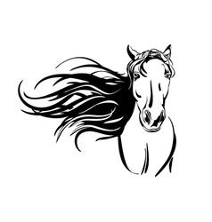 horse hand drawn llustration vector image vector image
