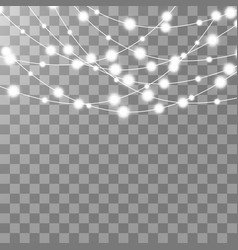 Christmas lights isolated on transparent vector