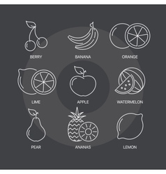 Fruit thin line icons set on dark background vector