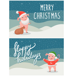 happy holidays and merry christmas postcards pigs vector image