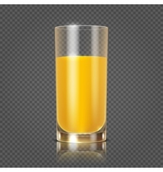 Orange juice in glass vector