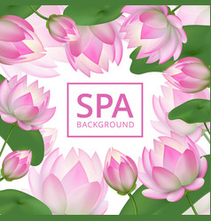 pink lotus flowers background invitation healing vector image