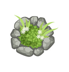 Plants and stones landscape element top view vector