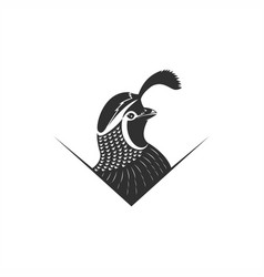 quail logo vector image