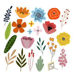 set isolated floral elements with hand vector image