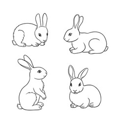 set rabbits in contours vector image