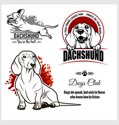 Dachshund - set for t-shirt logo and vector